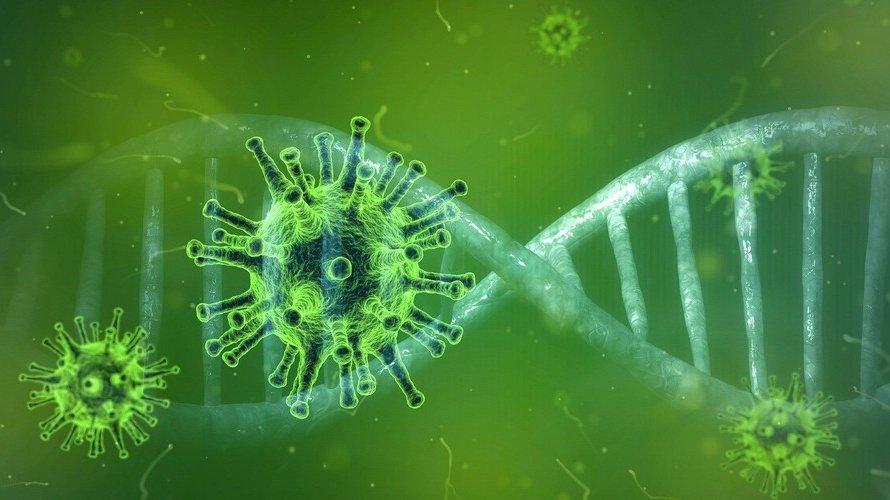 Farmacêutica americana anuncia descoberta de anticorpo que neutraliza o coronavírus
