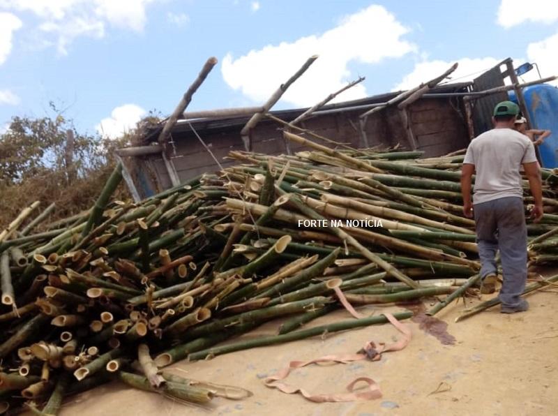 Caminhão carregado com bambu tomba em ladeira na zona rural de Cruz das Almas