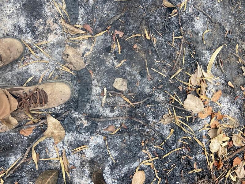Corpo de Bombeiros combate incêndio em área de vegetação no Cajueiro, em Santo Antônio de Jesus